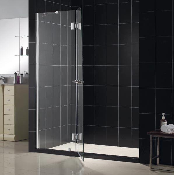 Aqua Plus Shower Door Frameless Shower Door By Dreamline